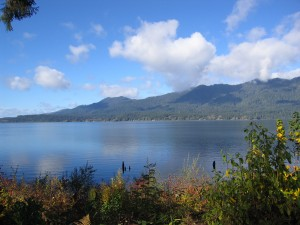 Lake Quinault by Tom Harpel