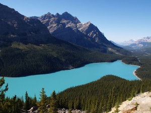 Peyto Lake by Jane Belinda Smith